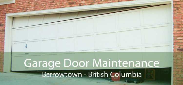 Garage Door Maintenance Barrowtown - British Columbia