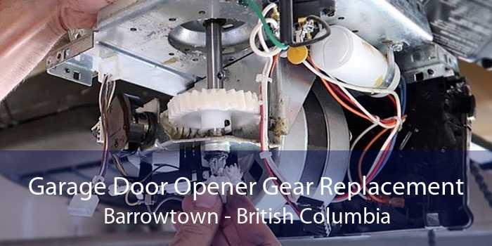 Garage Door Opener Gear Replacement Barrowtown - British Columbia