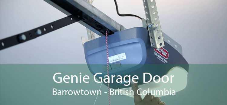 Genie Garage Door Barrowtown - British Columbia