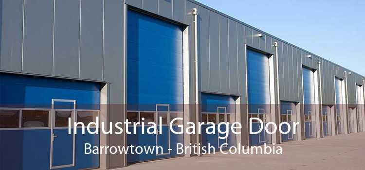Industrial Garage Door Barrowtown - British Columbia