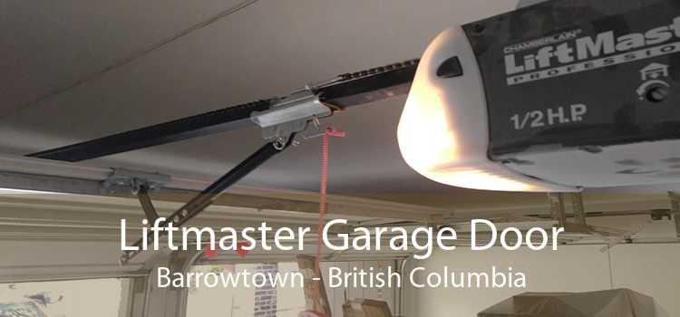 Liftmaster Garage Door Barrowtown - British Columbia